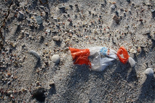 Warnemünde (GERMANY): Marine litter found at the beach